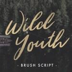 Wild Youth – Free Brush Script