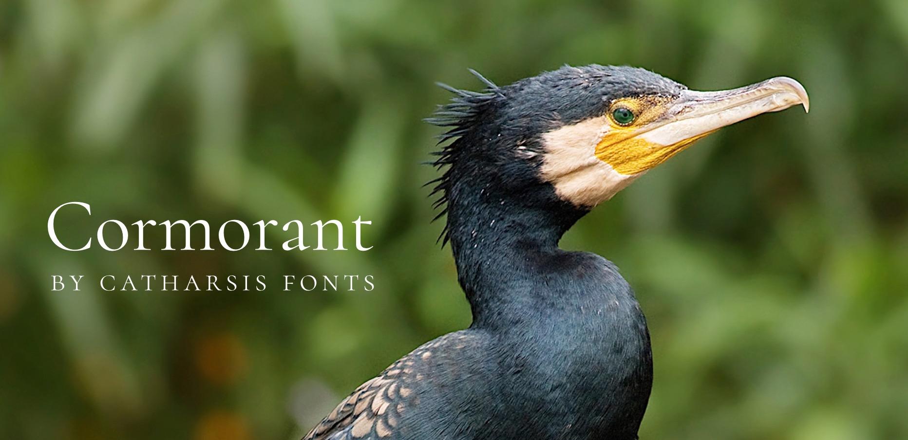 cormorant font banner
