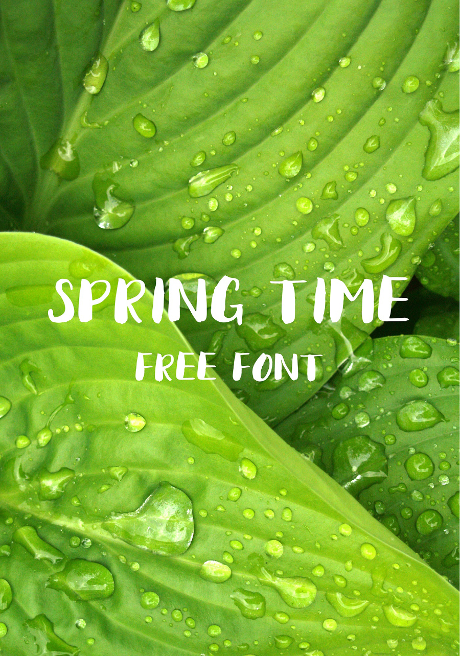 Maksym-Chechel_SPRING-TIME_brush-font_050217_prev01