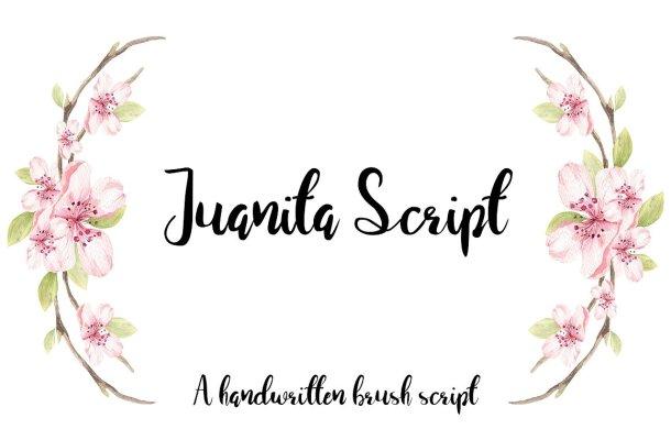 Juanita Script Free Font