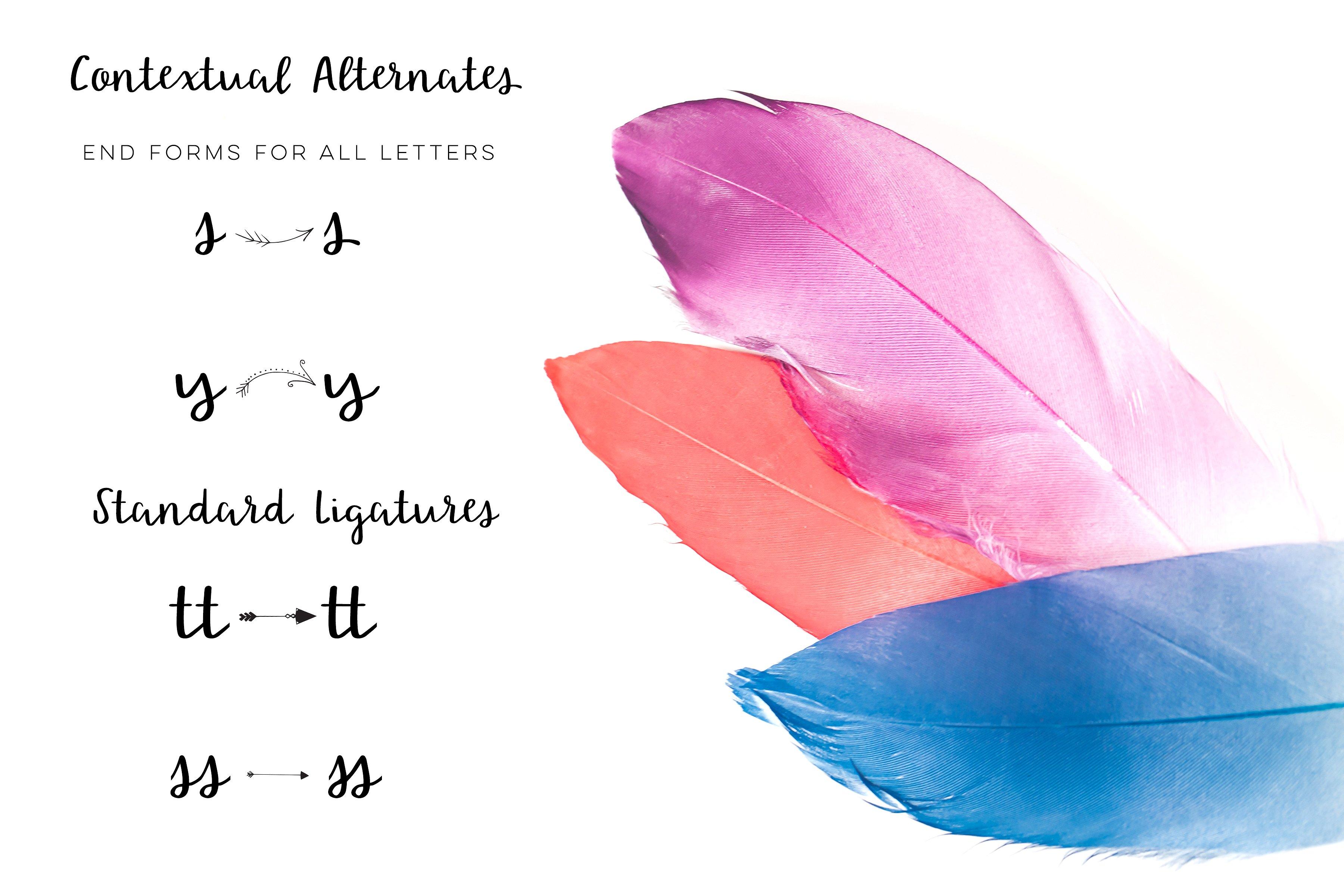 lovely-nirvana-script-font-1