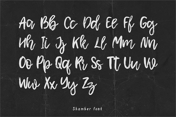shamber-script-font-1