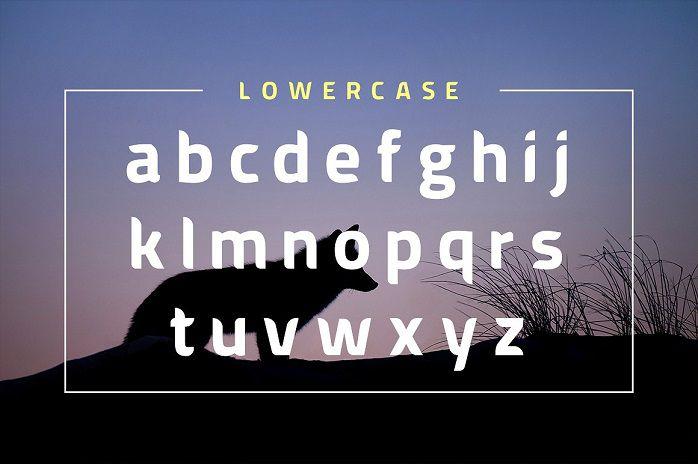 American Fox Font-2