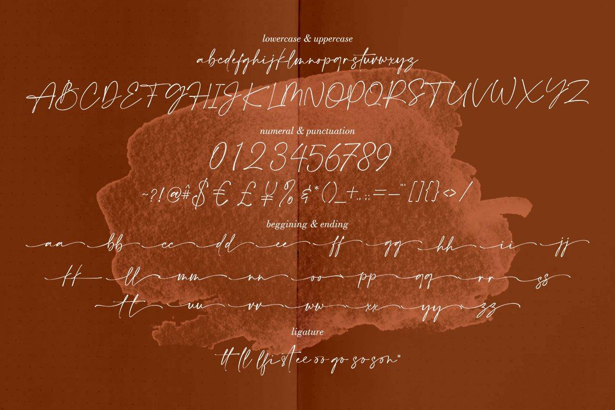 Amalfi Coast Calligraphy Font-3