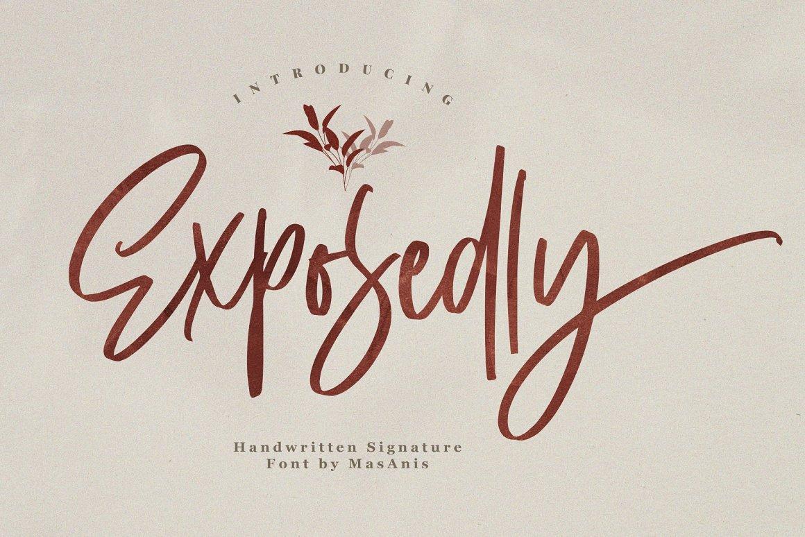 exposedly-prev-1-(custom)-