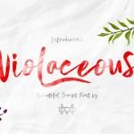 Violaceous – Modern Script Font