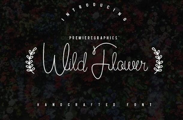 Wild Flower Script Font