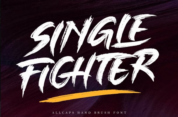 Single Fighter – Brush Font