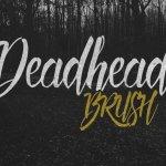 Deadhead Brush Font