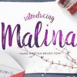 Malina Brush Font