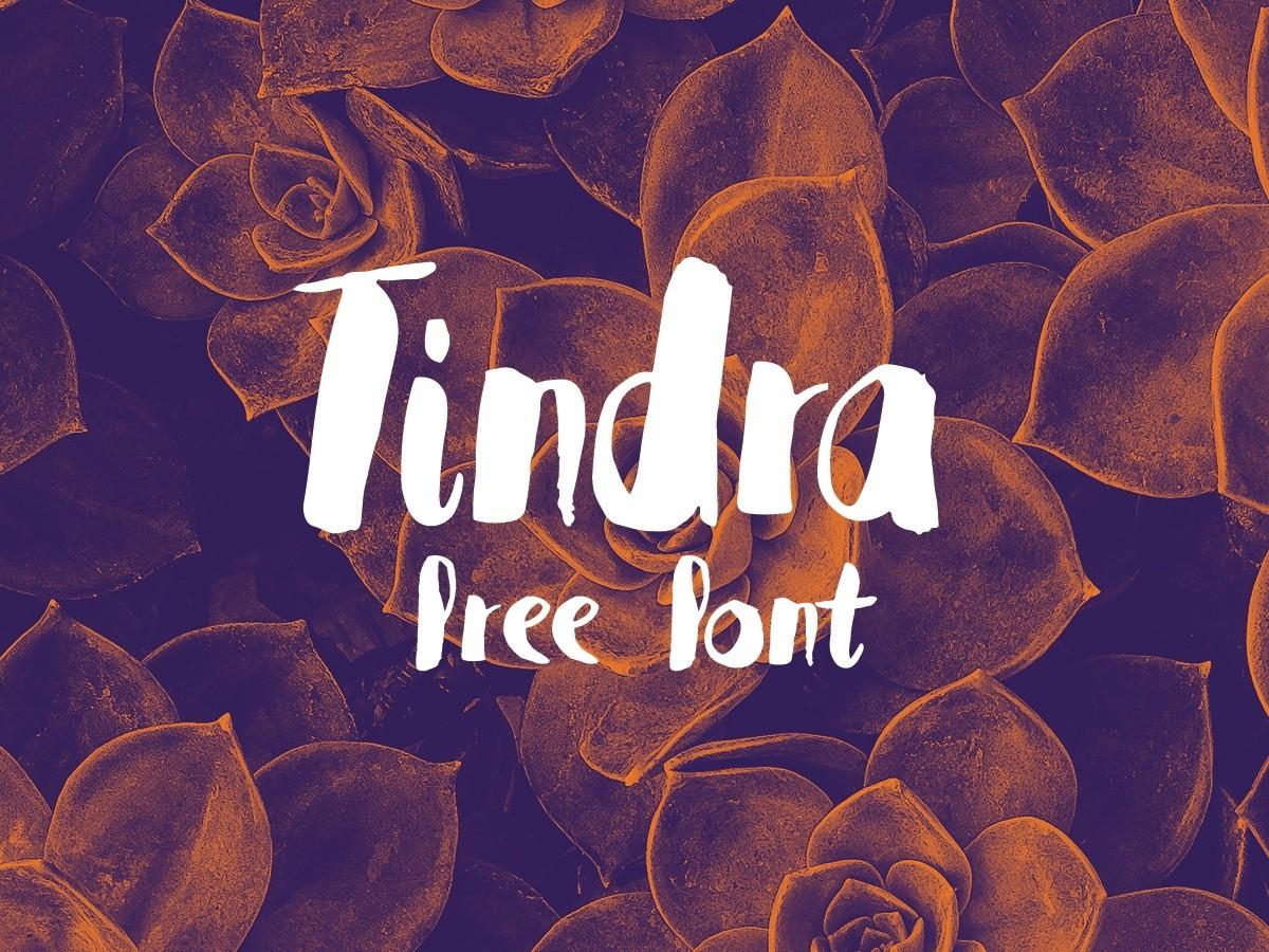 Tindra-Font