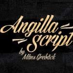 Angilla Bold Script Font