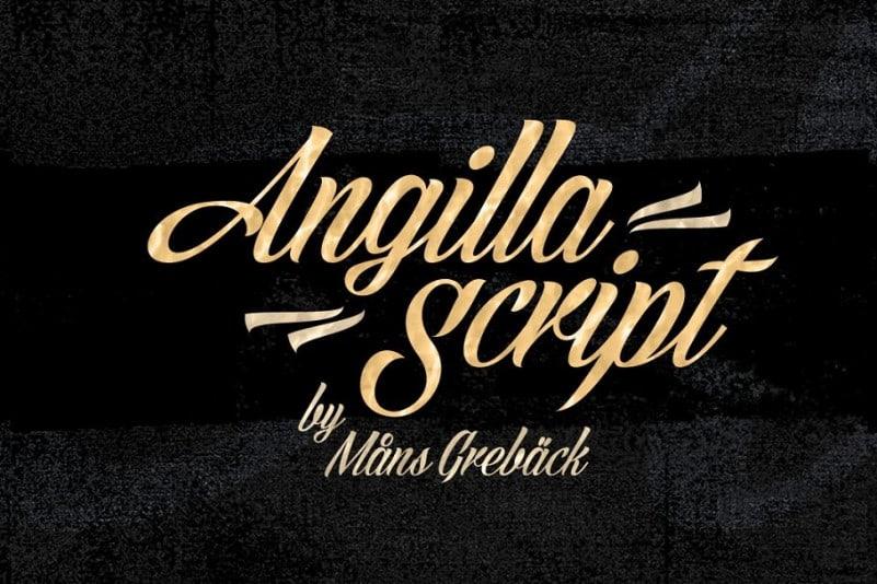 angilla-4
