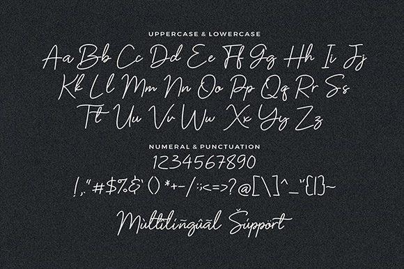 Barttany-Monoline-Signature-Font-4