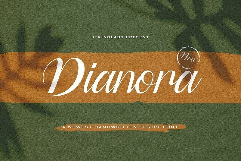 Dianora-Handwritten-Script-Font-1