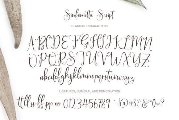 Sinfonietta-Handwritten-Script-Font-3