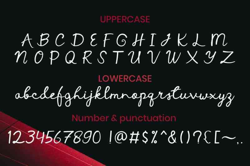 Vanneria-Handwritten-Font-3