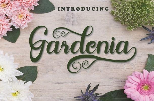 Gardenia Lovely Calligraphy Script Font