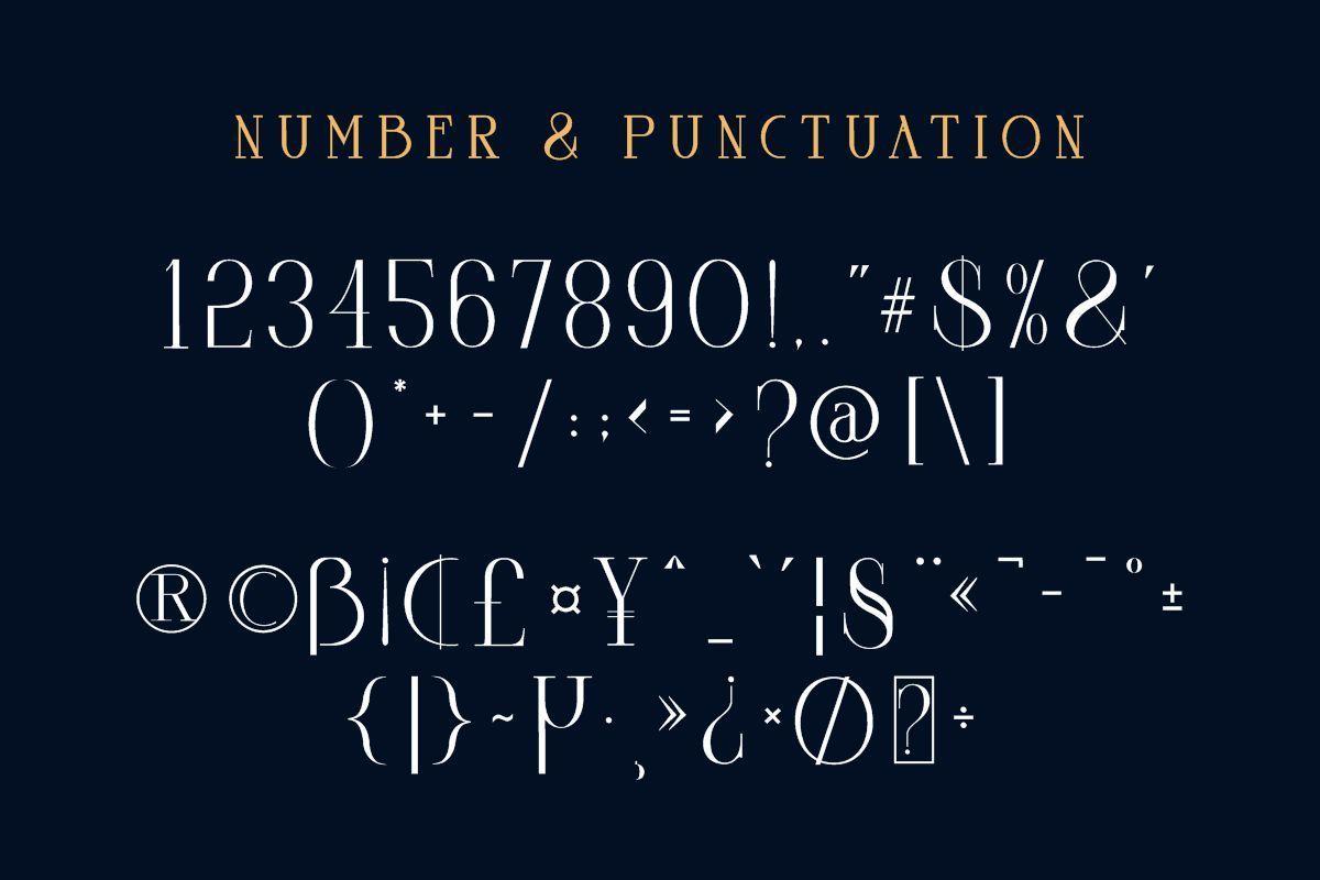 Goord-Modern-Serif-Font-4 (1)