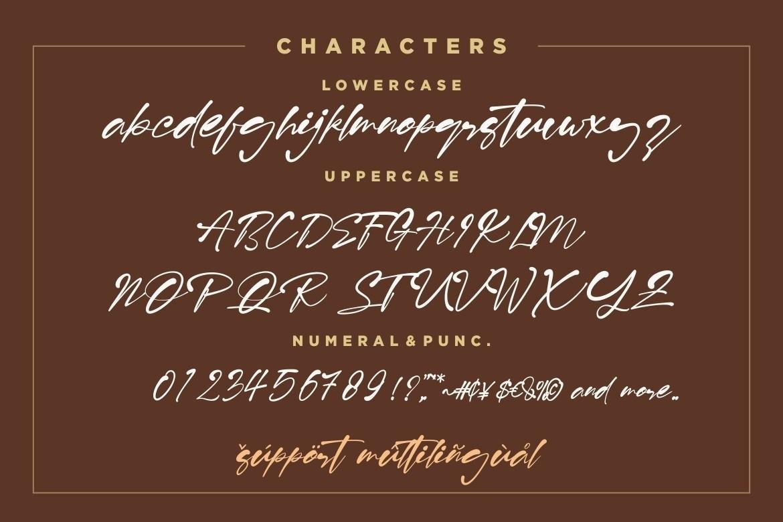 Risolla-Calisto-Bold-Handwritten-Script-Font-4 (1)