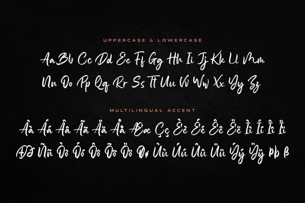 Someone-Handbrush-Script-Font-3 (1)