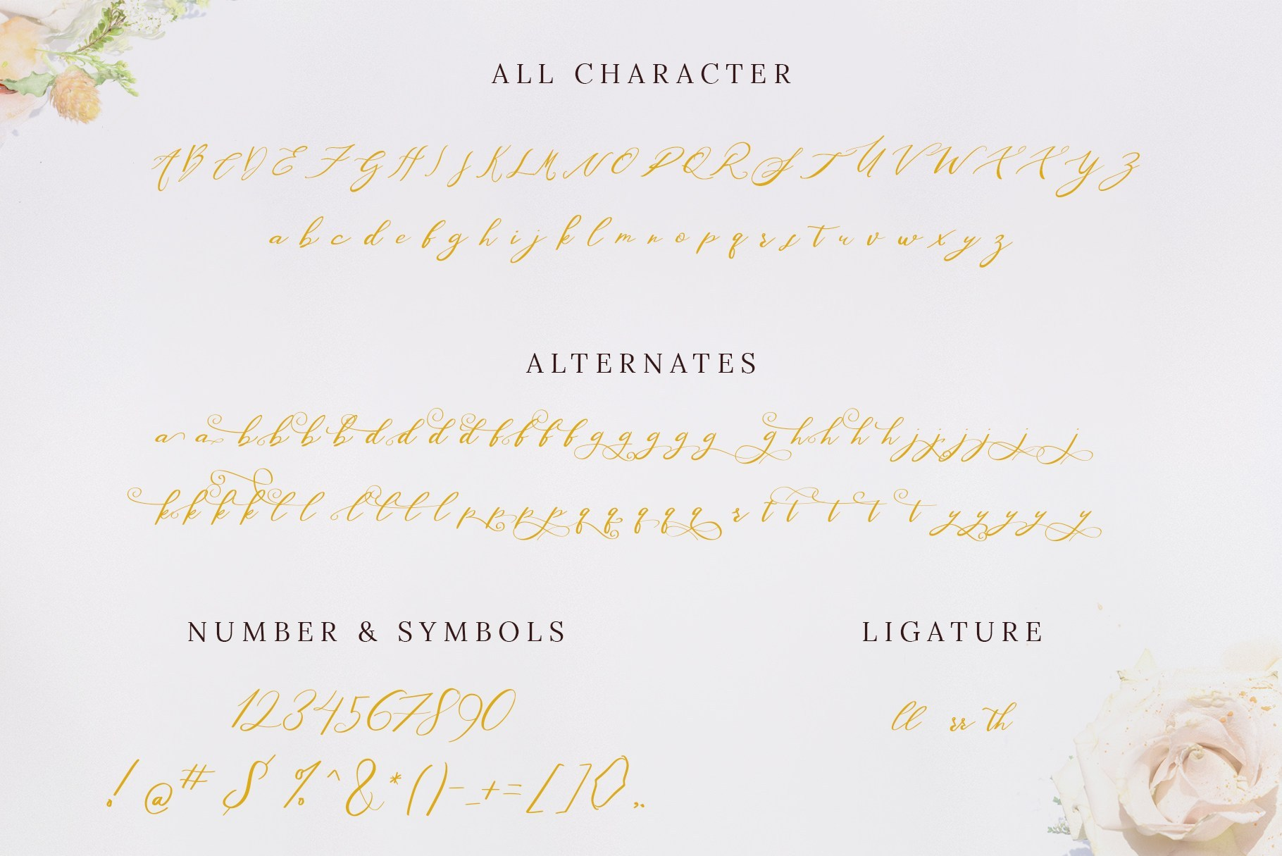 Washington-Beautiful-Calligraphy-Script-Font-3