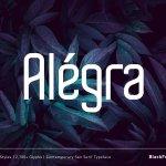 Alégra Typeface