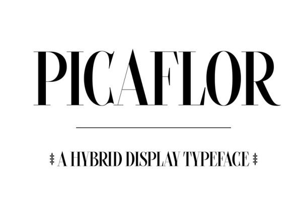 Picaflor Font