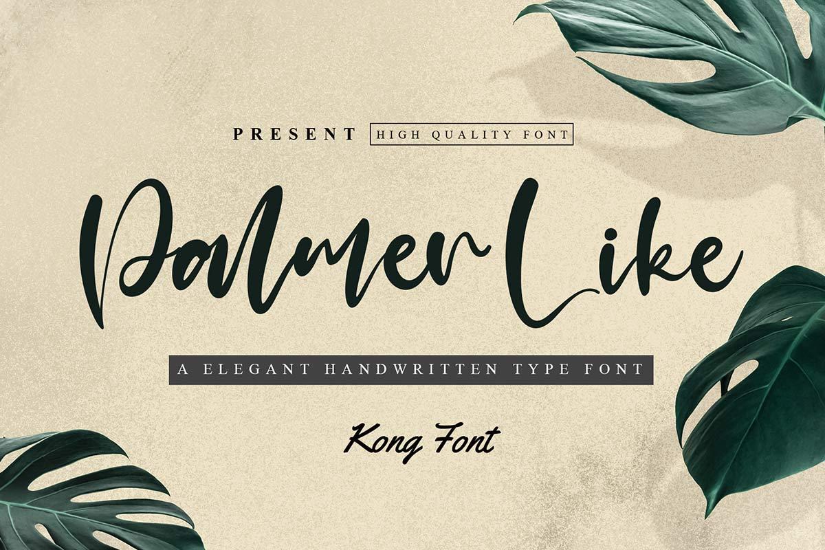 Palmer-Like-Font