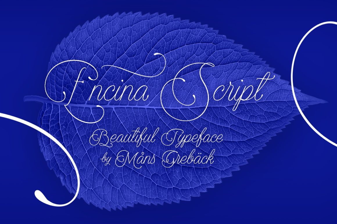 Encina-Script-Font