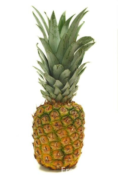 Fruit Pineapple Pictures Free Use Image 09 08 58 By