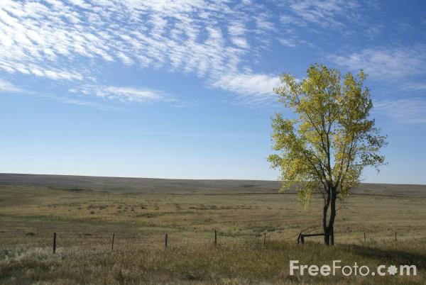 Fall Color Great Plains Montana USA Pictures Free Use