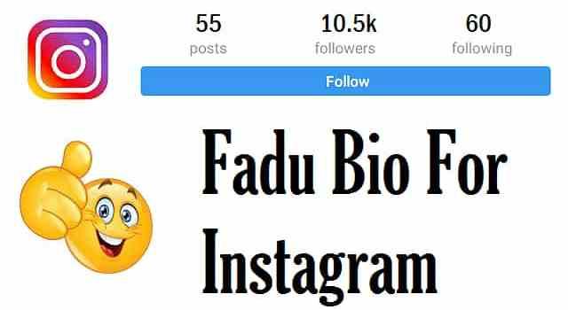 Fadu-Bio-for-Instagram-In-Hindi (1)