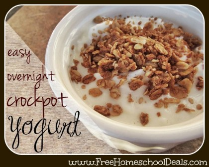 Easy Crockpot Yogurt