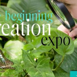 FREE Live Online Creation Expo Jan 15-17, 2013