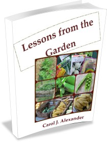 Lessons from the Garden book