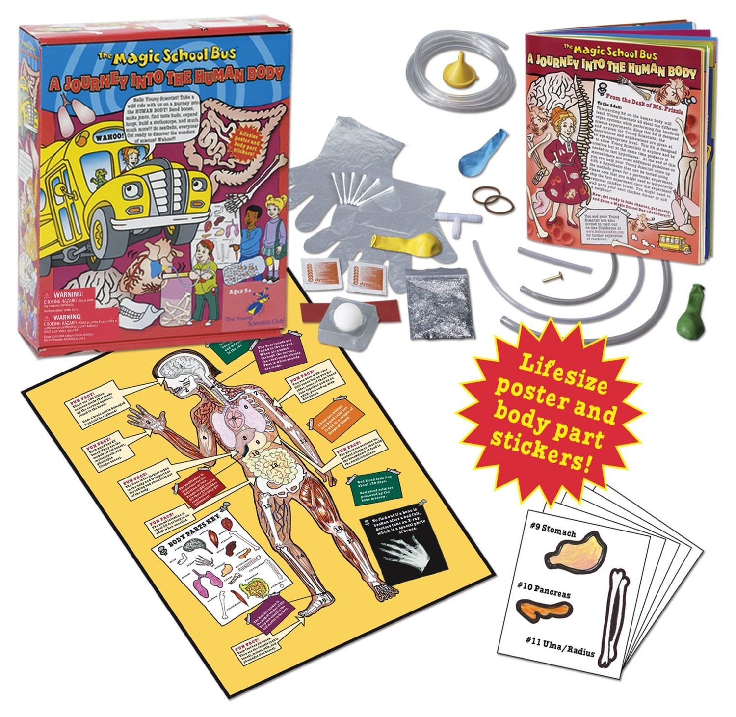 7 Magic School Bus Science Kits 14 Amp Under