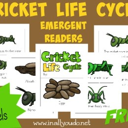 FREE Cricket Life Cycle Emergent Readers