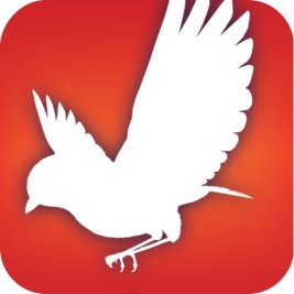 Free Audubon Bird Guide App: North America