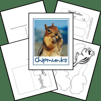 FREE Chipmunk Lapbook