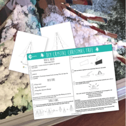 FREE Holiday Science Experiment: DIY Crystal Christmas Tree