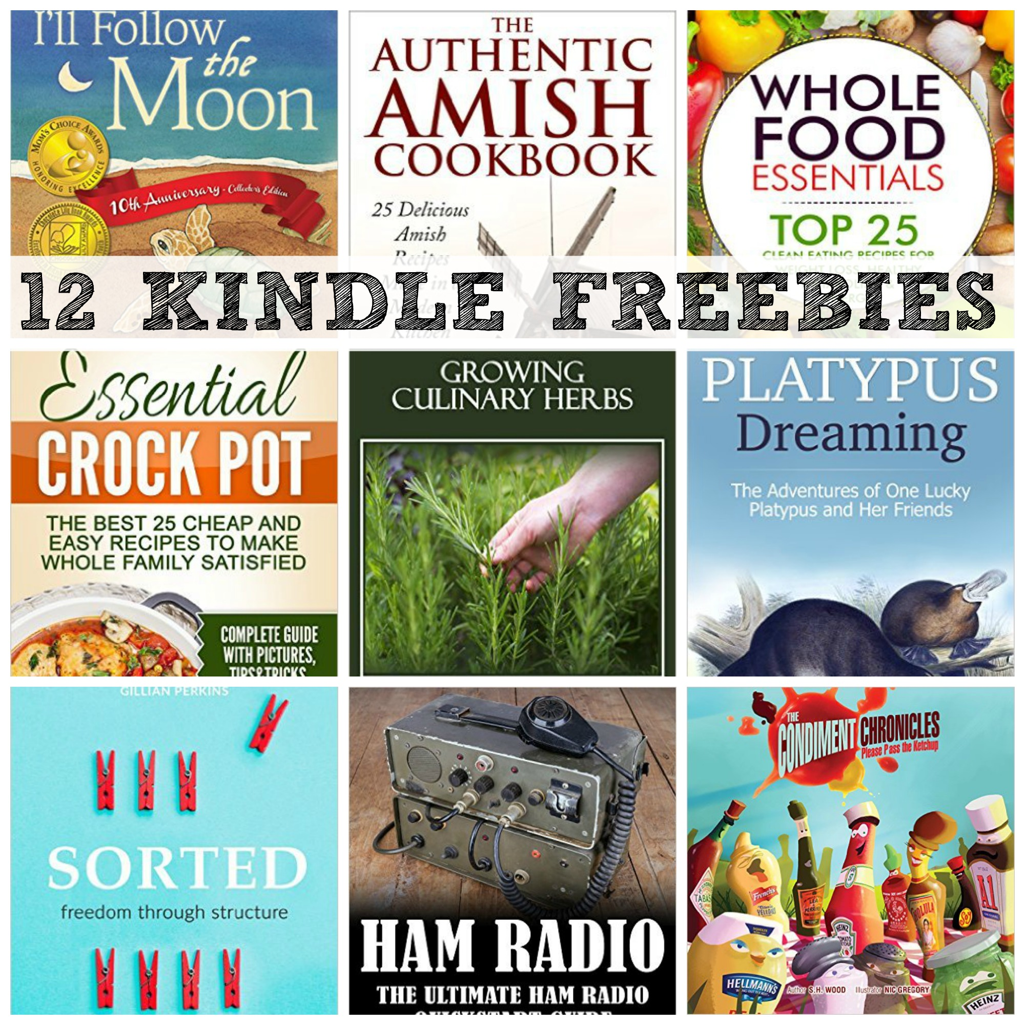 12 Kindle Freebies The Authentic Amish Cookbook How To