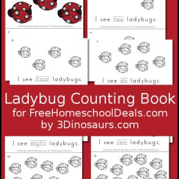 FREE LADYBUG COUNTING BOOK (Instant Download)
