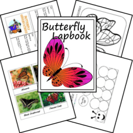 FREE Butterfly Lapbook