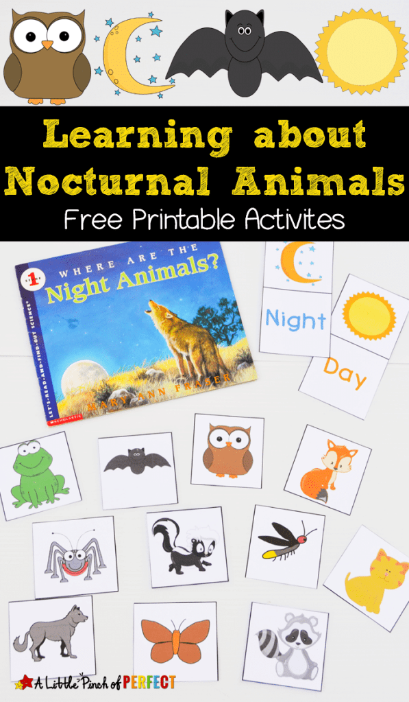 FREE Nocturnal Animals Printables | Free Homeschool Deals