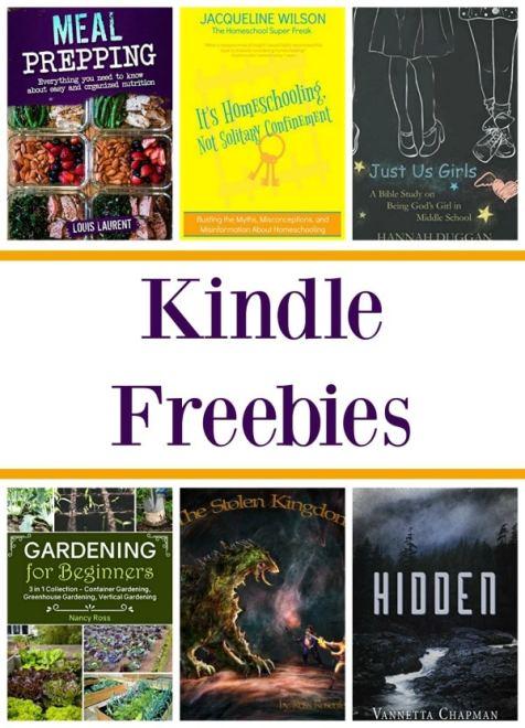 13 Free Kindle Books: The Stolen Kingdom, Capsule Wardrobe, & More!