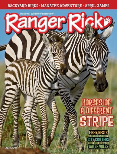 Ranger Rick Magazine Only $11.99! (55% Off!)