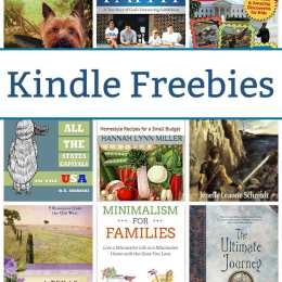 18 Kindle Freebies: King's Warrior, Minimalism for Families, & More!