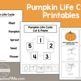 Free Pumpkin Life Cycle Printable Pack