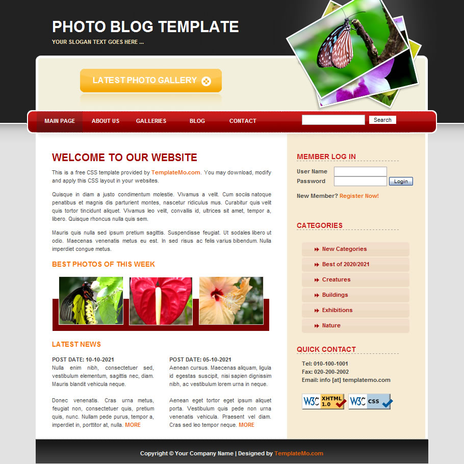 photography free html website templates. Black Bedroom Furniture Sets. Home Design Ideas